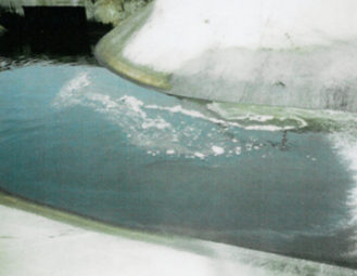 PRP applied in a contaminated spillway